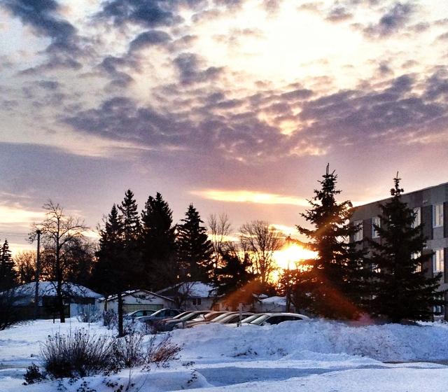 Sunrise on Ness Ave